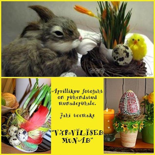 """Fotojahi aprillikuu teema on """"Värvilised munad"""""""