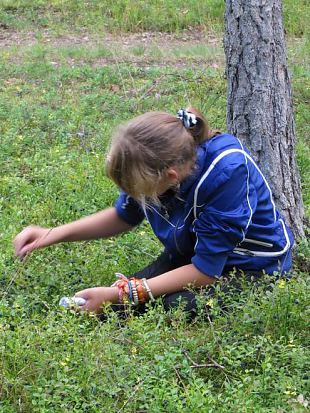 Mets oli mustikaid ja seeni täis - meie orienteerusime