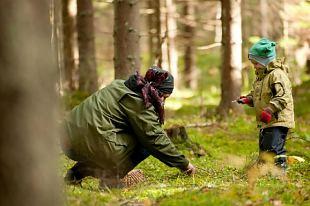 Metsa seenele! Auuuu, auuuu !