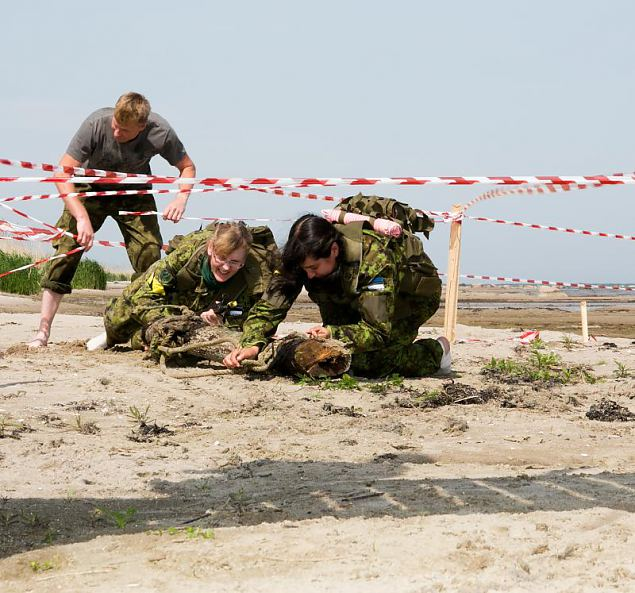 Saaremaa aasta naiskodukaitsja 2013 on Angela Au