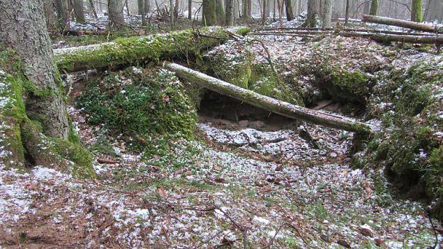 Metsavendade jälgedes Karukõrve koopasse
