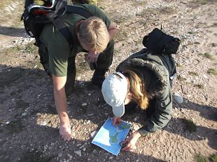 Sel päeval olime kiviusku ehk Sügisene õppematk Harilaiul