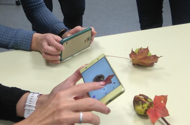Mobiiligraafia koolitus Narva jaoskonnas