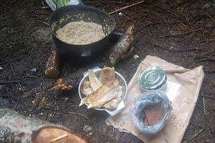 Ehe ja lihtsakoeline elu metsas