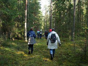 Tallinlannad käisid harjukate kutsel Võsul sügist otsimas